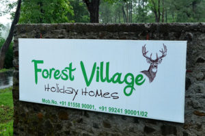 Forest village holiday homes